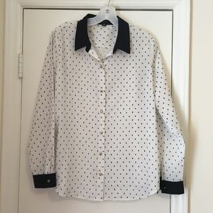 Ann Taylor Embroidered Dot Button Up Blouse